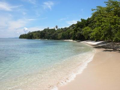 Panama Beach Homes
