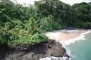 Bocas del Toro Properties